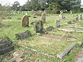A guided tour of Broadwater ^ Worthing Cemetery (106) - geograph.org.uk - 2344059.jpg