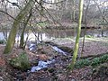 A minor tributary of the River East Allen - geograph.org.uk - 715827.jpg