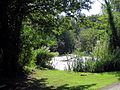 A pond at Hatfield Park Essex England 4.jpg