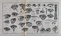 A sheet of eye examinations and diagrams of the eye with a n Wellcome V0015920.jpg