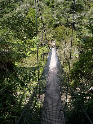 Abel Tasman National Park - Image: Abeltasmannp swingbridge