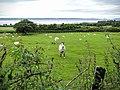 Aber, UK - panoramio - IIya Kuzhekin (1).jpg