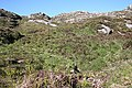 Above the Laxford River - geograph.org.uk - 820751.jpg