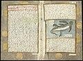 Adriaen Coenen's Visboeck - KB 78 E 54 - folios 168v (left) and 169r (right).jpg