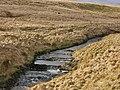 Afon Elan above Abergwngu - geograph.org.uk - 1180017.jpg
