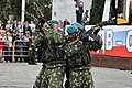 Airborne Troops Day 2013 (509-17).jpg