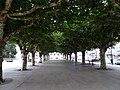 Alameda, Ordes, Coruña.jpg