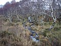 Allt Loch nan Uain - geograph.org.uk - 1166736.jpg