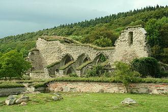 Alvastra Abbey - Ruins of the monastery.
