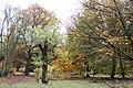 Americká zahrada - Chudenice - Okres Klatovy. (002).jpg