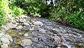 Anakkal Water Falls - panoramio (2).jpg