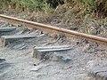 Ancienne voie ferrée à la Pointe du Portzic 5.jpg