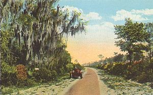 Dixie Highway - Dixie Highway in St. Johns County, Florida. This section was previously part of the older John Anderson Highway.