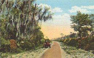 Dixie Highway - Postcard image of Dixie Highway in St. Johns County, Florida. This section was previously part of the older John Anderson Highway.