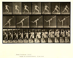 Animal locomotion. Plate 316 (Boston Public Library).jpg