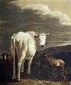 Anton radl boeuf blanc 1806.jpg