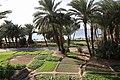 Aqaba fields - panoramio (1).jpg