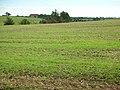 Arable fields in early autumn - geograph.org.uk - 234104.jpg
