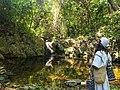 Arhuacos protectores de la naturaleza.jpg