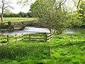 Ashford Weir - geograph.org.uk - 1470573.jpg