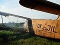 Atrakcia v dinoparku - panoramio.jpg