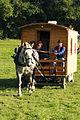 Attelage Divers mondial du cheval percheron 2011Cl J Weber11 (23456746353).jpg