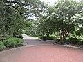 Audubon Park New Orleans St Charles Side 3 July 2020 44.jpg