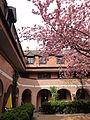 Augsburg Mattes 2013-05-01 (12).JPG