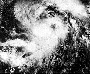 1977 Pacific hurricane season - Image: Ava 1977