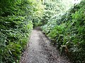 Back Lane, Briestfield - geograph.org.uk - 1002192.jpg