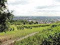 Bad Nauheim, Johannisberg - geo.hlipp.de - 20121.jpg