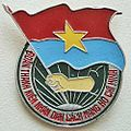 Badge of Ho Chi Minh People's Revolutionary Youth Union.jpg