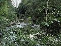 Banat,Nera Canyon - panoramio (13).jpg