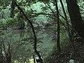 Banat, Nera Canyon - panoramio (19).jpg