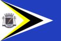 Bandeira Castilho.png