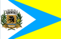 Bandeira de Barra do Turvo