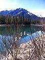 Banff Walk.jpg