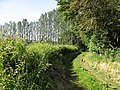 Barratt's Mill Lane - geograph.org.uk - 843184.jpg