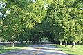 Barton Shore Drive Barton Hills Michigan.JPG