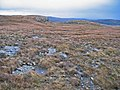 Bedrock exposure in the moor above Creag a' Mhill - geograph.org.uk - 652628.jpg