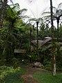 Bedugul Botanical Garden - 2015.02 - panoramio.jpg
