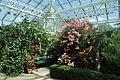 Bergianska trädgården-IMG 3474.jpg