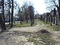 Bezhitskiy rayon, Bryansk, Bryanskaya oblast', Russia - panoramio (209).jpg