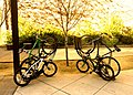Bike Arcs - Rack Arcs - Baby Bikes - Margaret Battaglia Plaza - Lot R - Palo Alto.JPG