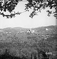 Biljana 1953 (5).jpg