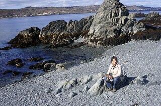 Spaniards Bay (bay) bay in Newfoundland and Labrador, Canada