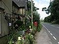 Bisterne, Gone Ape - geograph.org.uk - 2041087.jpg
