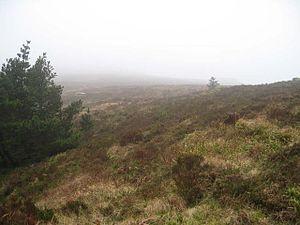 Ballyhoura Mountains - Black Rock on the Ballyhoura Mountain Range
