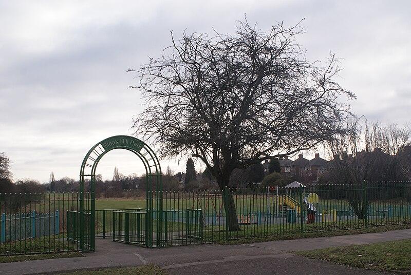 File:Bleak Hill Park - 2011-01-29.jpg