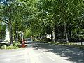 Bonn Heussallee (2).jpg